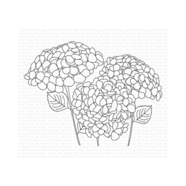 CS-459 My Favorite Things Stamp Hydrangeas In Bloom