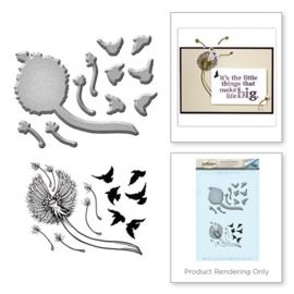 SDS046 Spellbinders Stamp & Die Set Dandelion