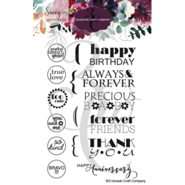 """C3SS518 Colorado Craft Company Clear Stamps General Greetings-Savvy Sentiments 4""""X6"""""""