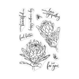 "HA-CM448 Hero Arts Clear Stamps Protea Flowers 4""X6"""