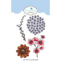 CS044 Elizabeth Crafts Clear Stamps Blooms & Leaves