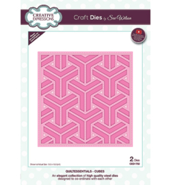 CED1702 Creative Expressions Cubes