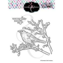 653835 Colorado Craft Company Metal Die Set  Dear Friend Robin-Big & Bold