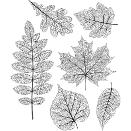"604080 Tim Holtz Cling Stamps Pressed Foliage 7""X8.5"""