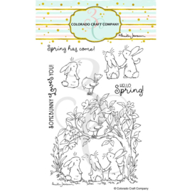 "652981 C3AJ449 Colorado Craft Company Clear Stamps Bunnies & Robin-By Anita Jeram 4""X6"""