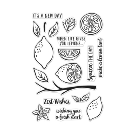 "620578 Hero Arts Clear Stamps 4""X6"" Zest Wishes"