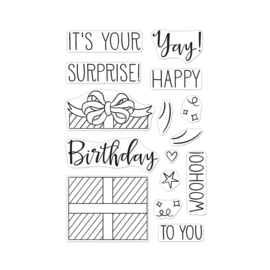 "625320 Hero Arts Clear Stamps Surprise Gift 4""X6"""