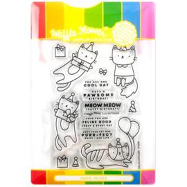 654999 Waffle Flower Stamp & Die Set Birthday Kitties