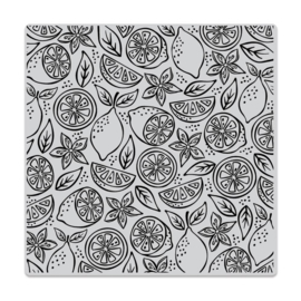 "620585  Hero Arts Cling Stamps 6""X6"" Fresh Citrus Bold Prints"