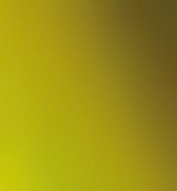 6628 - Inka Gold Grun Gelb