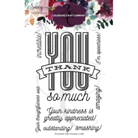 "624375 Colorado Craft Company Clear Stamps Thank You So-Savvy Sentiments 4""X6"""