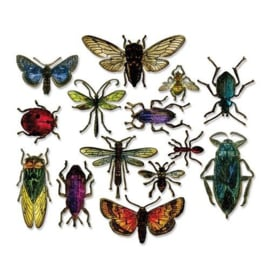 663068 Sizzix Framelits Die Set  Entomology By Tom Holtz 14PK