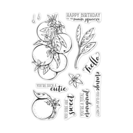 "620576 Hero Arts Clear Stamps 4""X6"" Orange Blossoms"