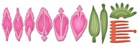 S2-064 Spellbinders Shapeabilities Die D-Lites Create A Stargazer Lily