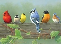 446608 Paint by Number Rail Birds