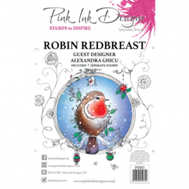 PI083 Creative Expressions Pink ink Robin redbreast clear stamp