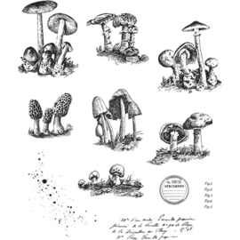 "CMS 377 Tim Holtz Cling Stamps Tiny Toadstools 7""X8.5"""