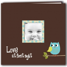 "063218 Baby Owl Printed Design Postbound Scrapbook Album 12""X12"" Blue"