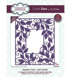 CED4385 Creative Expressions Leafy Frame