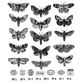 "CMS436 Tim Holtz Cling Stamps Moth Study 7""X8.5"""