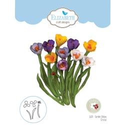 EC1638 Elizabeth Craft Metal Die Garden Notes-Crocus By Susan's Garden Club
