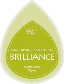 BDIP75 Dew Drop Thyme