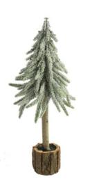 Kerstboom  Dusty