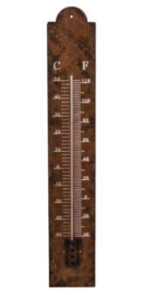 Thermometer metaal 10x2,5x60