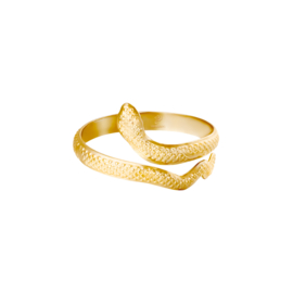 Ring Serpent Goud RVS
