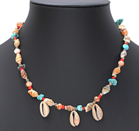 Ketting Colorful Shell