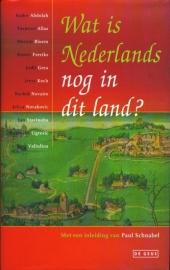 Wat is Nederlands nog in dit land, diverse auteurs