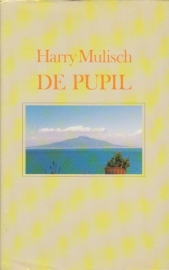 De pupil, Harry Mulisch