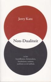 Non-Dualiteit, Jerry Katz