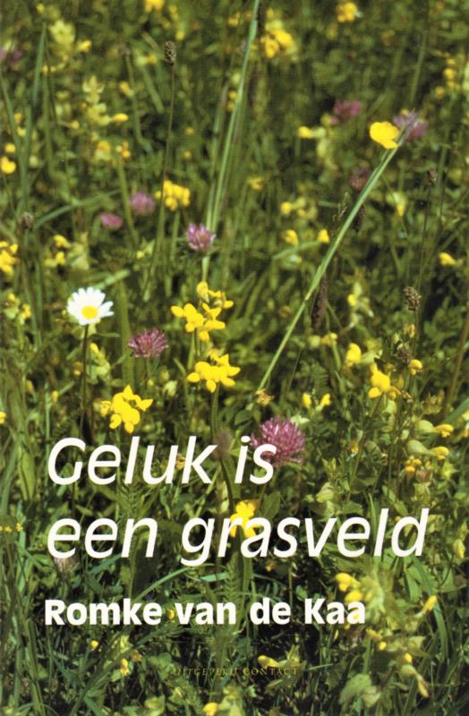Geluk is een grasveld, Romke van de Kaa