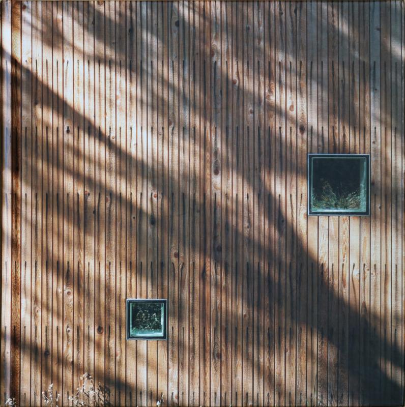 Wood Houses, Ruth Slavid