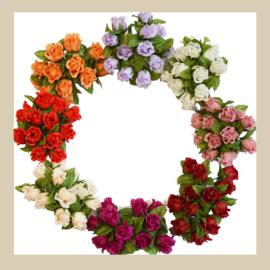 Bloemen | Struiken | Bomen