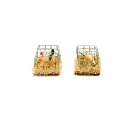Dv201a: Vogelkooitje 2.5 cm