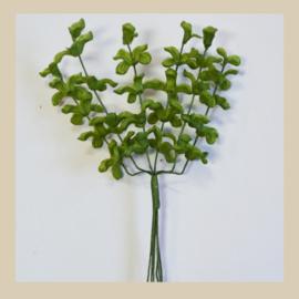 Bl-02.05: Groen blad