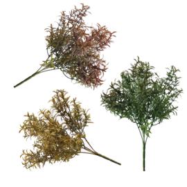 Bl-05: Tealeaf struikplantje