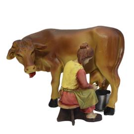 Kg11-7.06 Boerin melkt koe