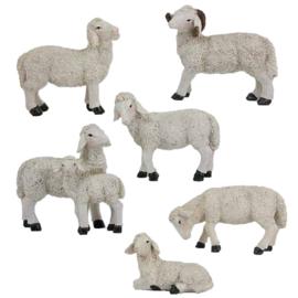 Dd-853 Schapenset6 schapen (voor 15-20-25cm fig)