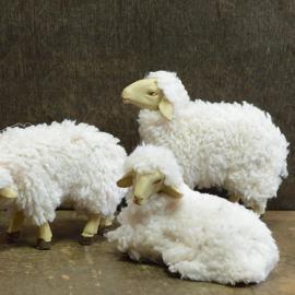 Dd-855 Wollige schapen (set 5 stuks)