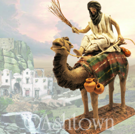 Z-TCbld-8.54: Bedoeïene op kameel