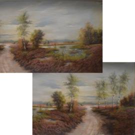 Gpa-B2ah: Achtergrond landschap (50 x 80cm)