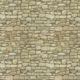 Gp08b: Steenpapier (ruïne-muur)