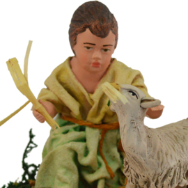 TCbld-4.12: Kind met schaap