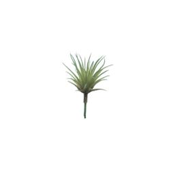 Bl-04.8a: Mini Tillandsia 'luchtplantje' (8 stks)