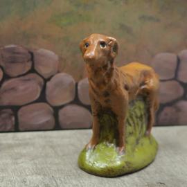 Hond 2.3:  7 cm