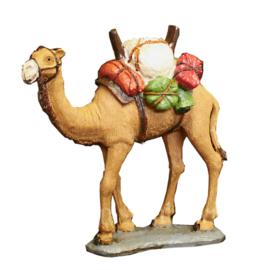 Alle kamelen