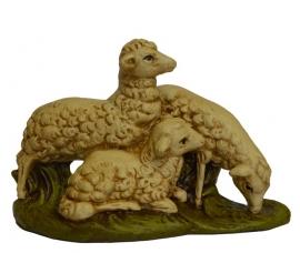 Schapen & Honden (GIPS)